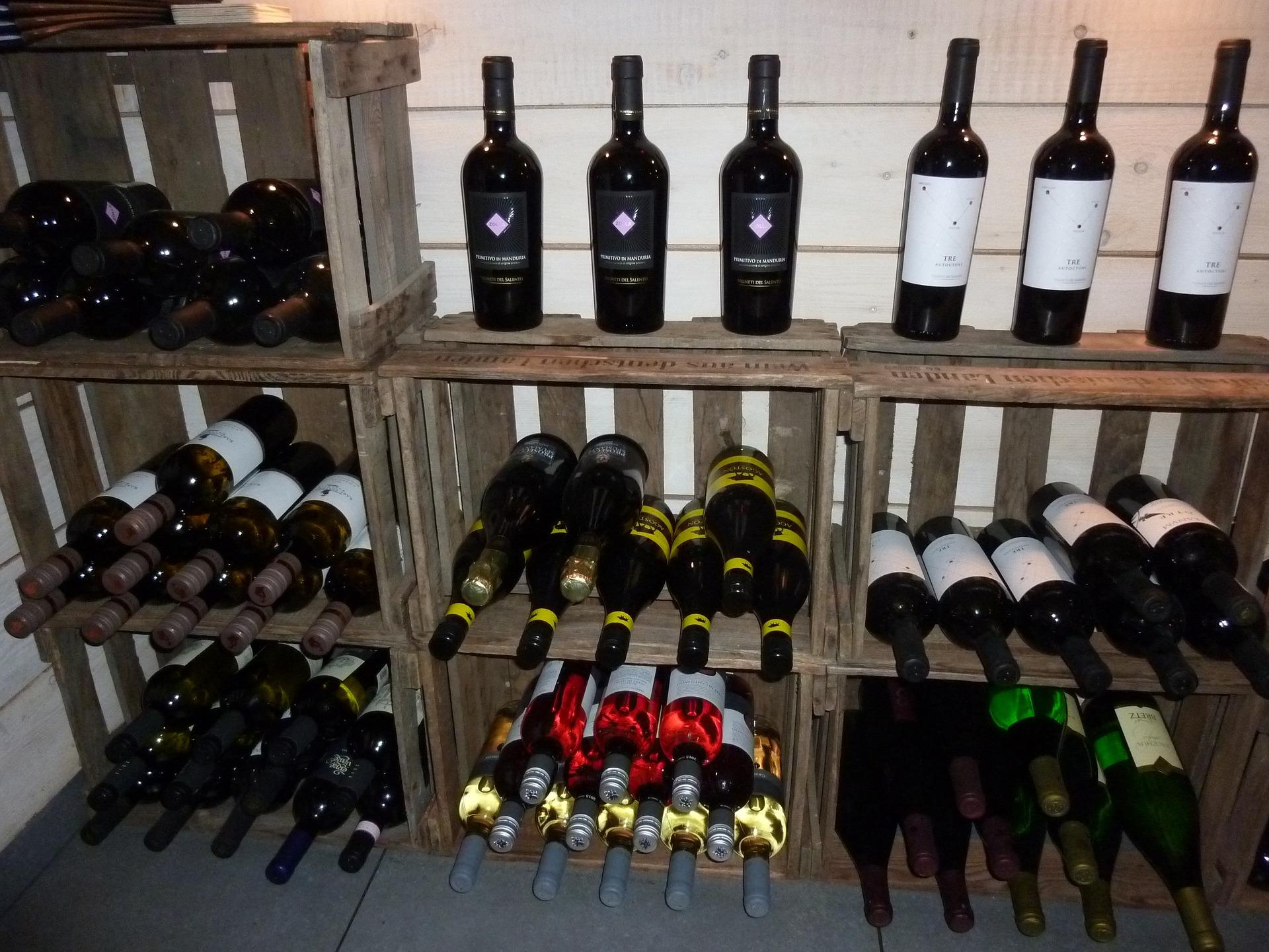 Vins & Gastronomie